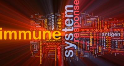 Häufig Herpes? – Warum Dein Immunsystem Schuld hat!